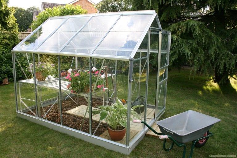vitavia-venus-8×6-greenhouse-silver