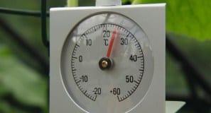 termometr Vitavia