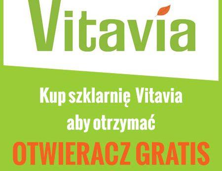 promocja vitavia
